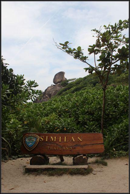 simil18
