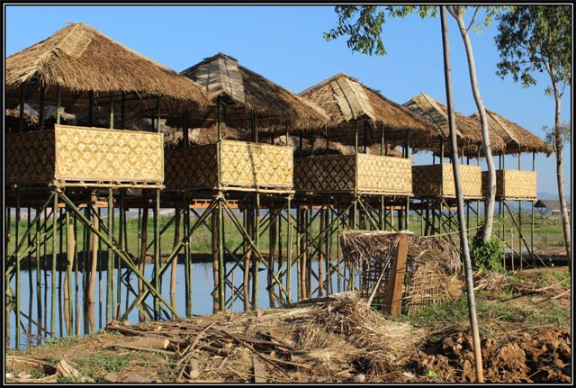 inle105