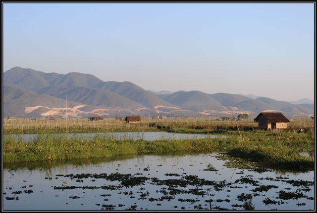 inle113