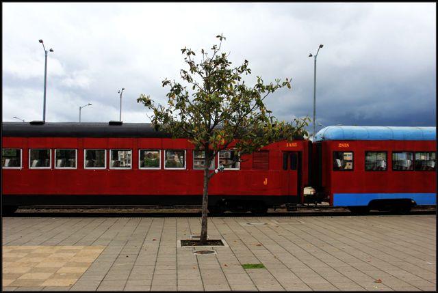 tren20