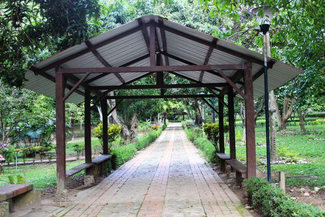 botanic44