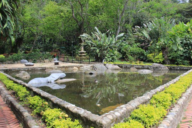 botanic6